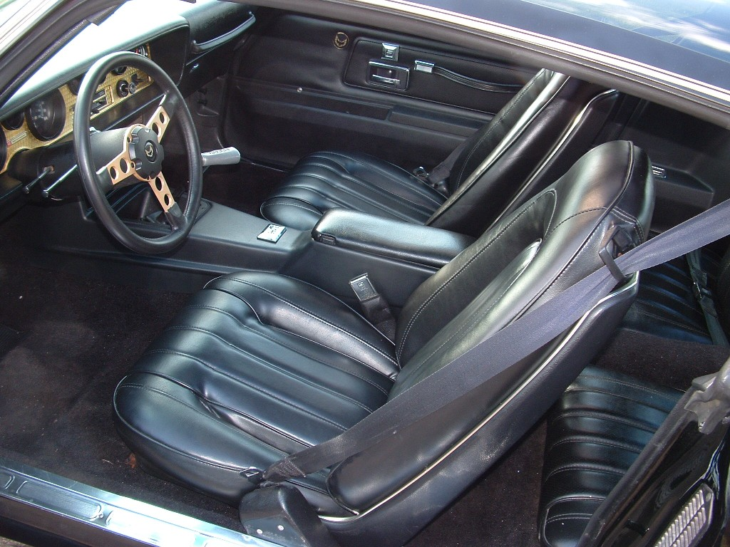 Int Deluxe on 1980 pontiac trans am specifications