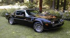 Late 1978 Pontiac Trans Am Decal Kit Complete