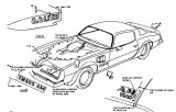 1973 - 1978 Trans Am Decal Placement