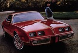 1978/79 Firebird Redbird Decal Kit