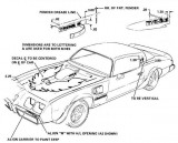 1979 - 1981 Trans Am Decal Placement