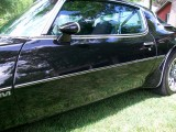 1974-1981 Trans Am Side Body Molding
